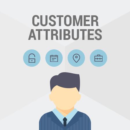 magento_ico_1.9_customer_attributes_1