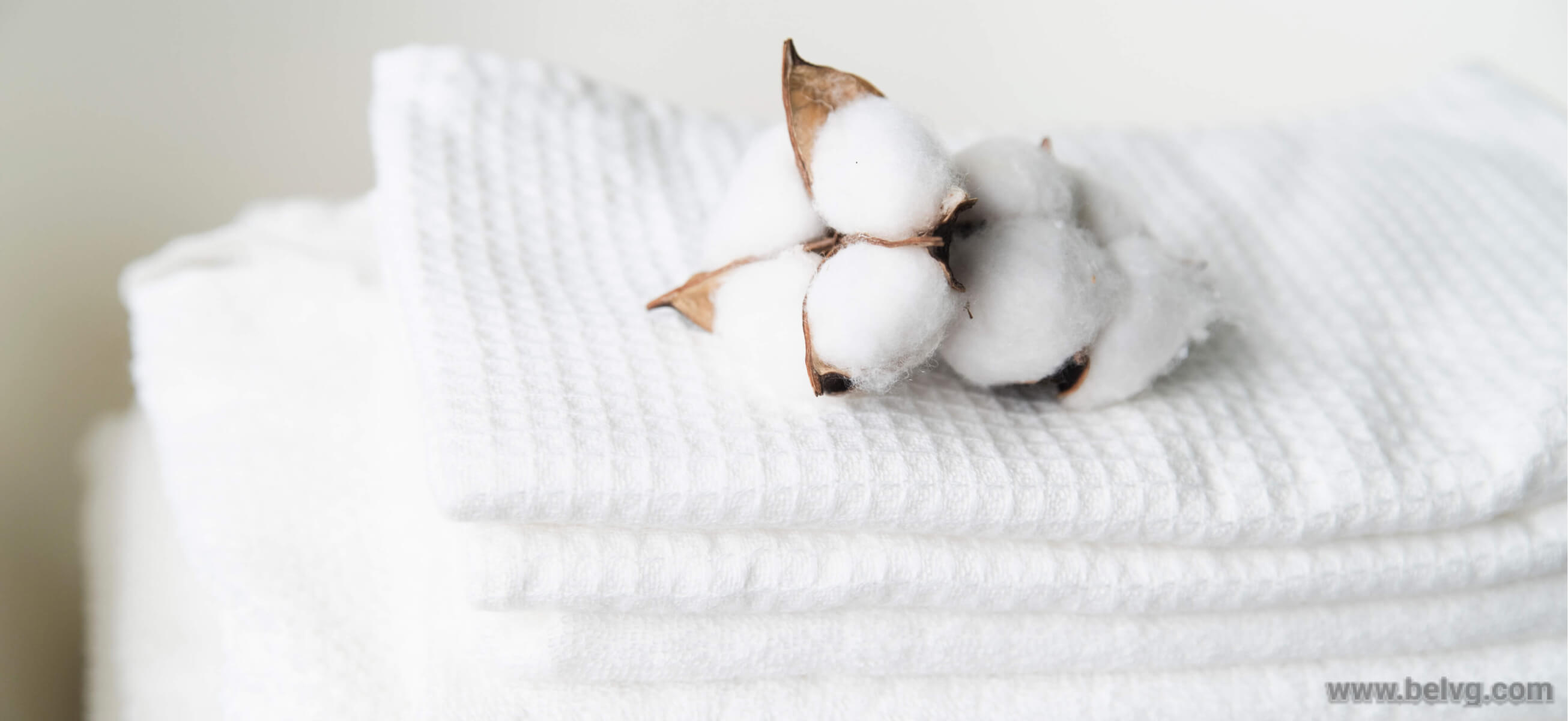 cotton dish towels - eco product