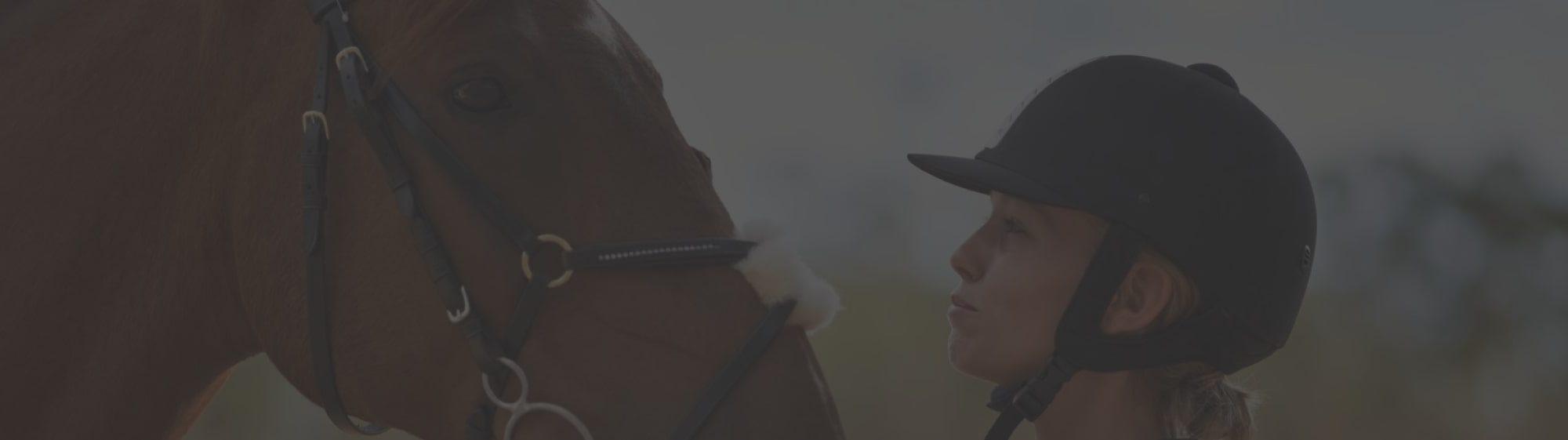ayr-equestrian-header